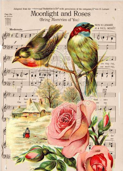 Birdsmusicwm