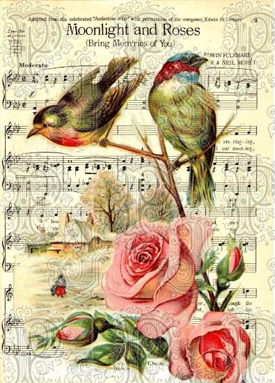 Birdsmusicwm (395x550)